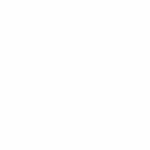 new vision therapy logo white